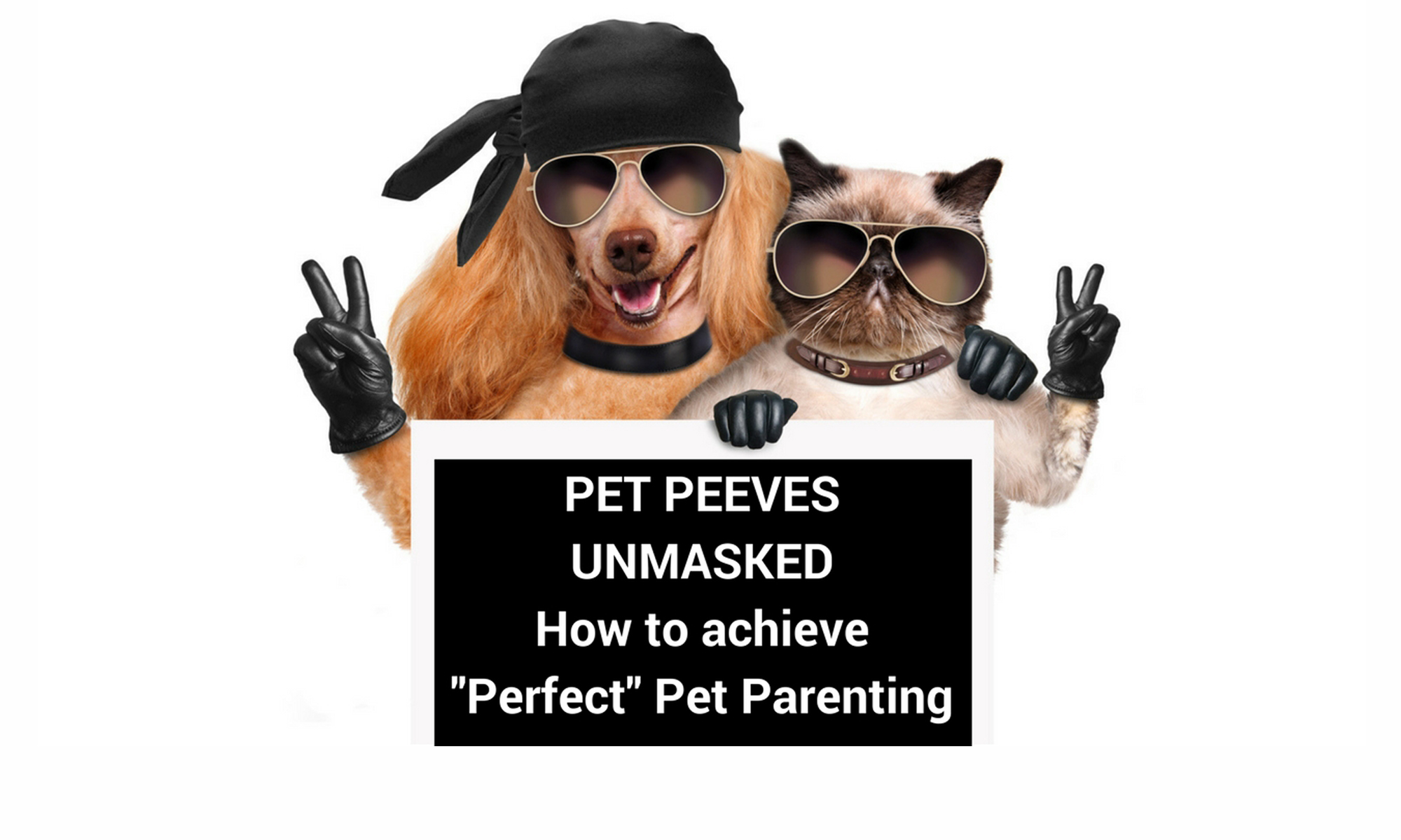Pet Peeves Unmasked is a blog about caring for dogs and cats featuring an expert's pet topics and pet peeves