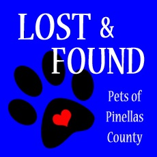 FB page run by local volunteers in Florida has lost pets search tips