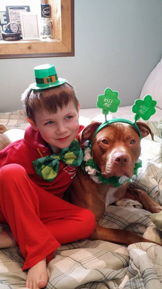 Hero dog TatorTot and the boy whose life he saved in a medical emergency