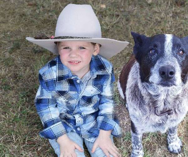 When Aurora went missing Max, the Australian Cattle Dog hero, never left her side