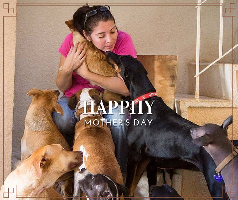 On this special day Chica's mom, Carla, got plenty of hugs from her adopted and rescued kids