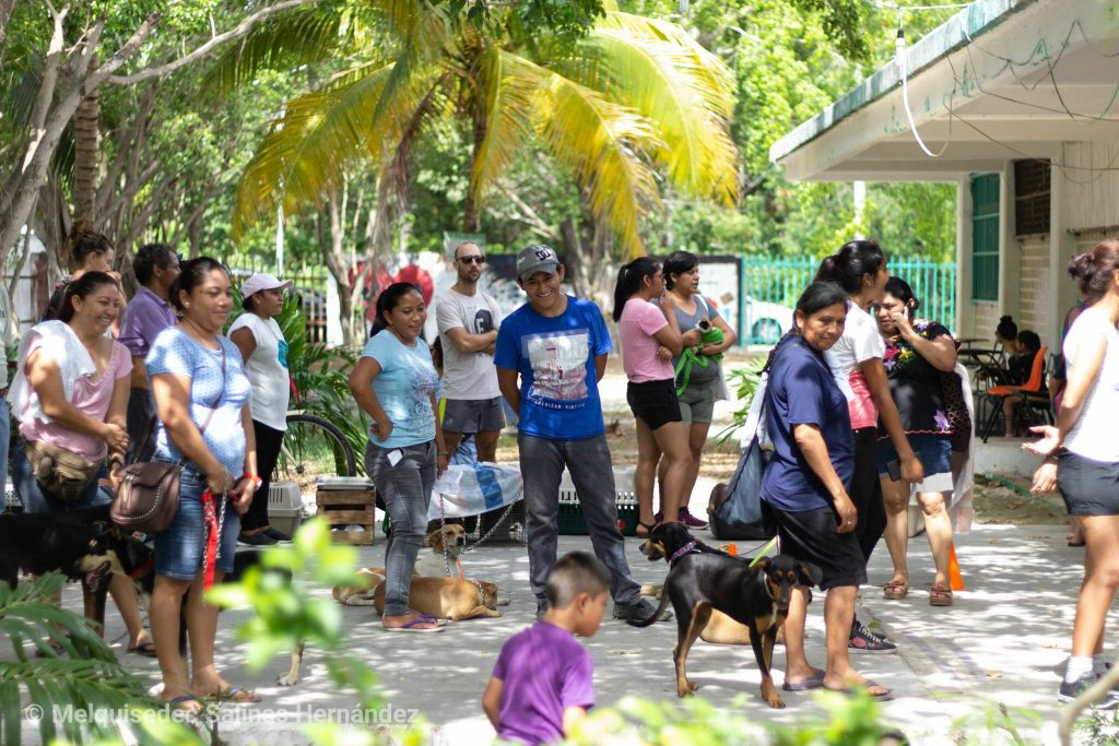 Families lining up to participate in Tulum's spay/neuter event for cats and dogs
